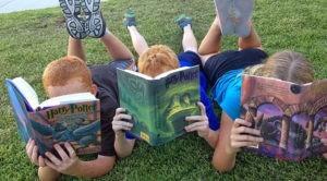 animación a la lectura y desarrollo
