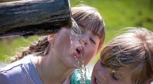 Motivos para beber agua según la ciencia
