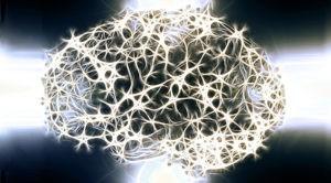 Neurogenesis del cerebro